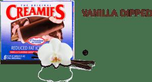 healthy ice cream flavor, vanilla chocolate dipped