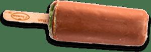 best ice cream mint chocolate dipped
