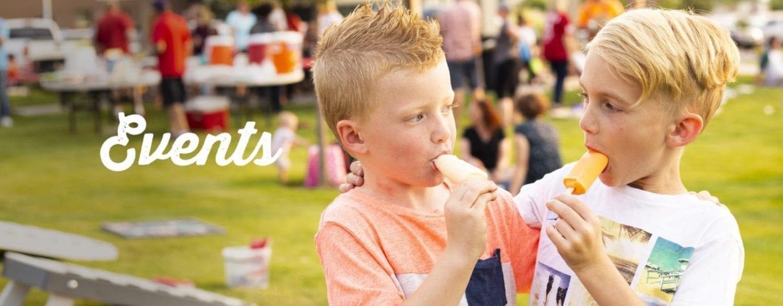frozen yogurt and healthy ice cream bars - Creamies